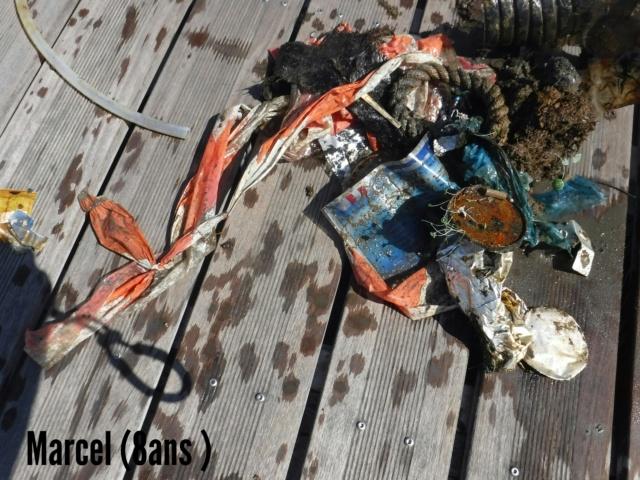 Ocean - Journée de l'océan, Opération mes rivages propres Img_2048