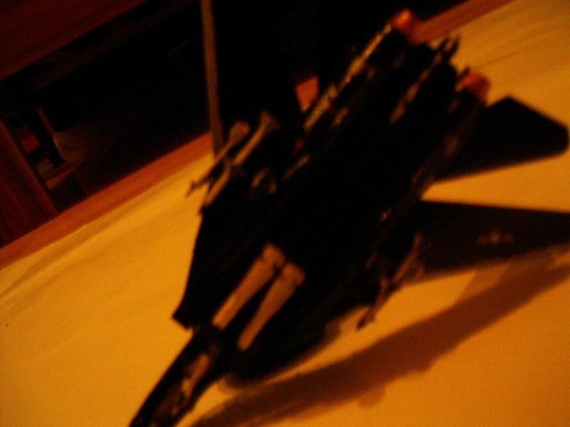 premiere maquette F-14 1/144 Imgp4613