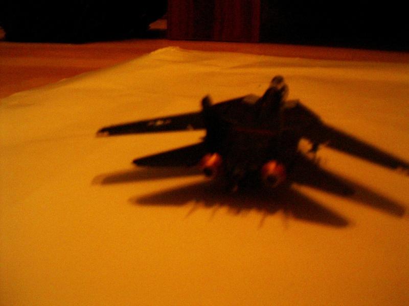 premiere maquette F-14 1/144 Imgp4614