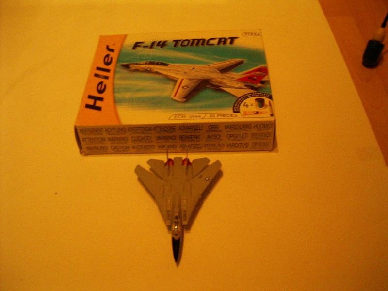 premiere maquette F-14 1/144 Imgp4711