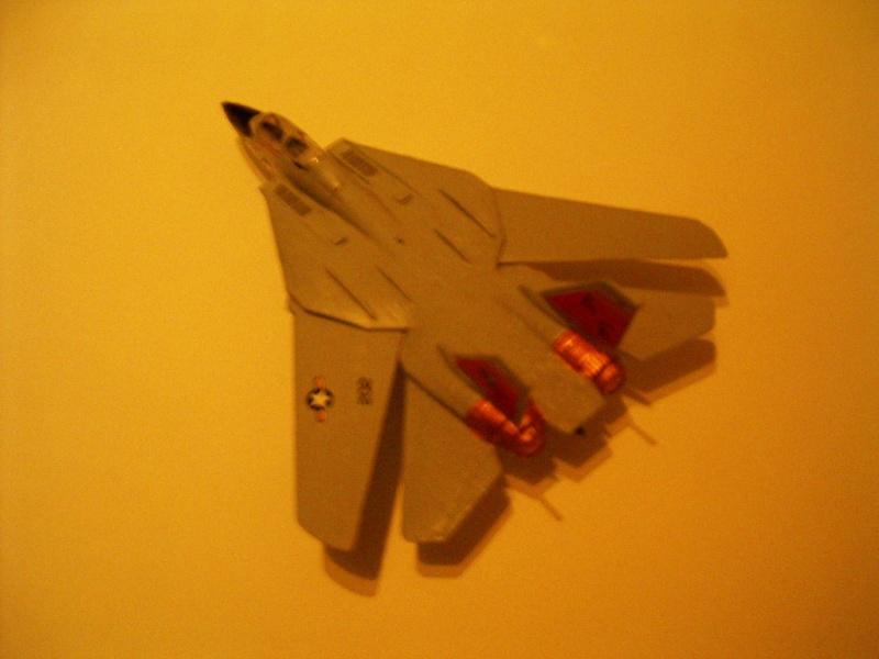 premiere maquette F-14 1/144 Imgp4713
