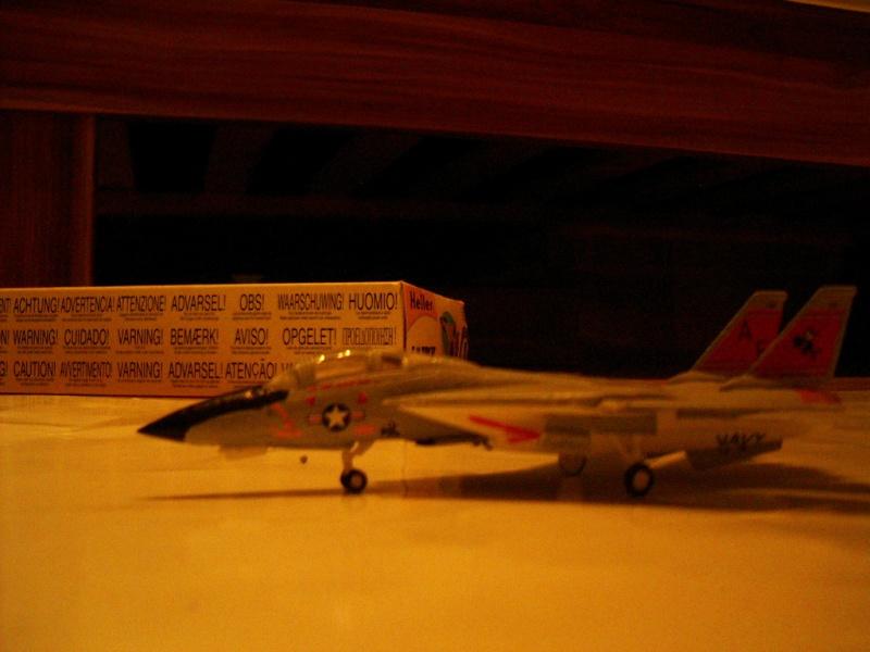 premiere maquette F-14 1/144 Imgp4714