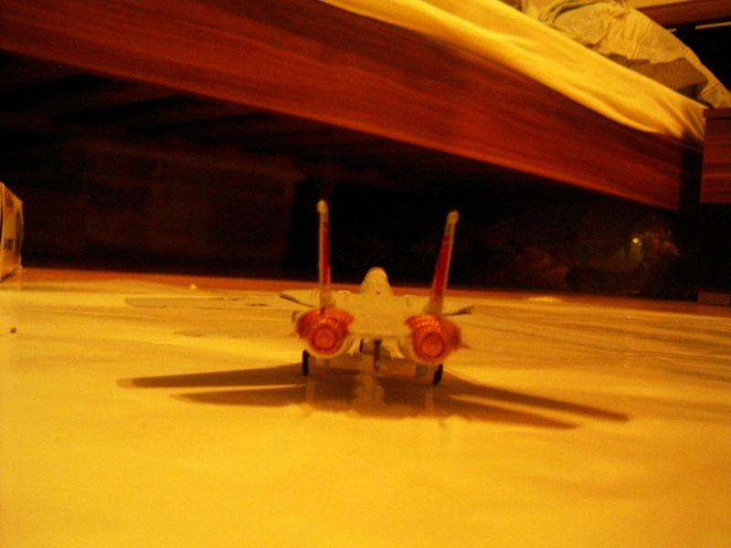 premiere maquette F-14 1/144 Imgp4715