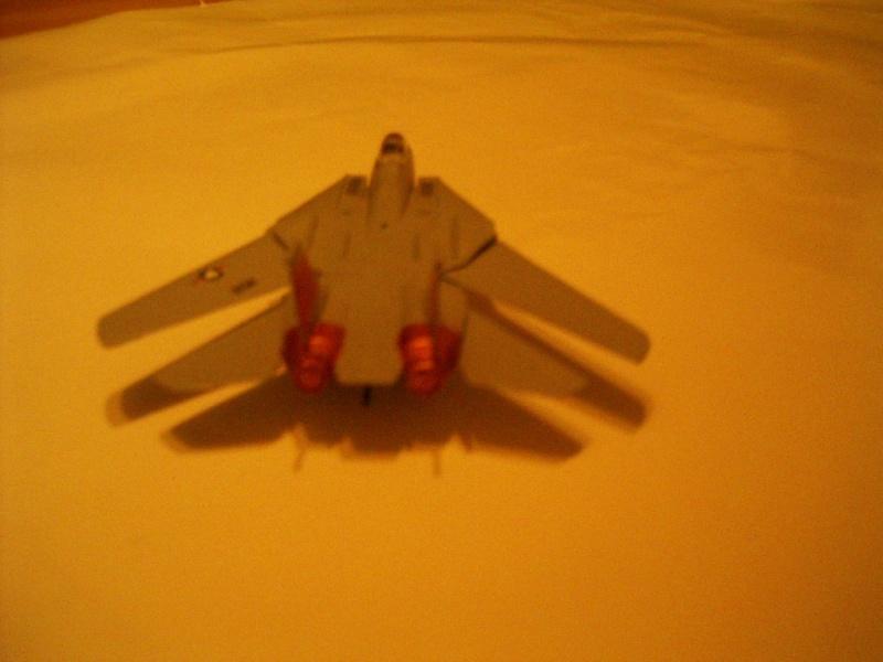 premiere maquette F-14 1/144 Imgp4716