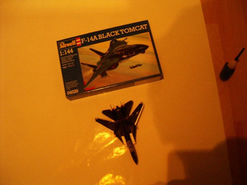 premiere maquette F-14 1/144 Imgp4717