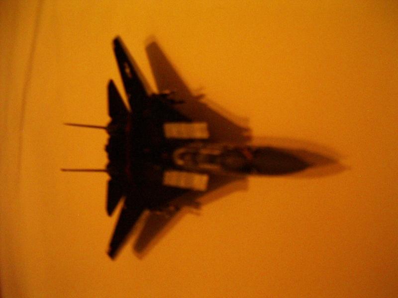 premiere maquette F-14 1/144 Imgp4718