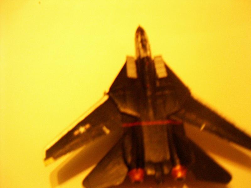 premiere maquette F-14 1/144 Imgp4719