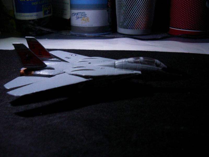 premiere maquette F-14 1/144 Imgp4726