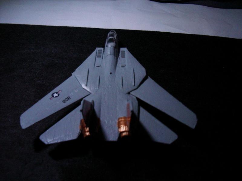 premiere maquette F-14 1/144 Imgp4728