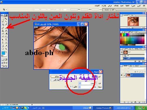 اتصالات abdo-ph 213