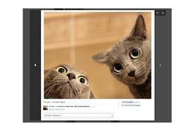ВКонтакте – «Фотографии» Photos10
