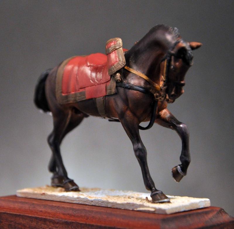 Général de Cuirassiers 1804-1815 Dsc_0028