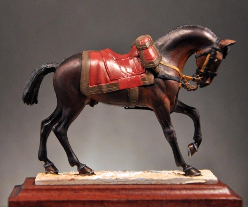 Général de Cuirassiers 1804-1815 Dsc_0029