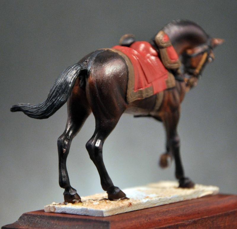 Général de Cuirassiers 1804-1815 Dsc_0030