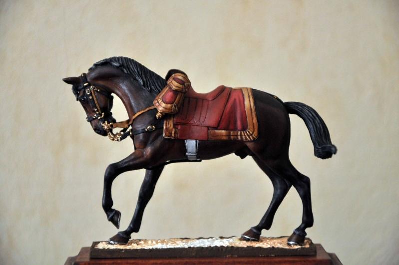 Général de Cuirassiers 1804-1815 Dsc_0031
