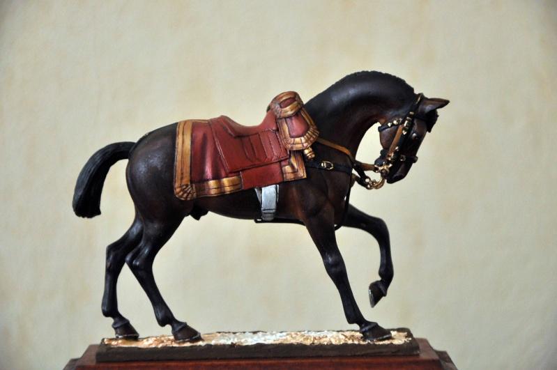 Général de Cuirassiers 1804-1815 Dsc_0032