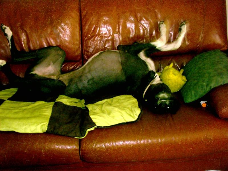 Posture originale pour dormir....et chez vous c'est comment??? - Page 3 Pic00210