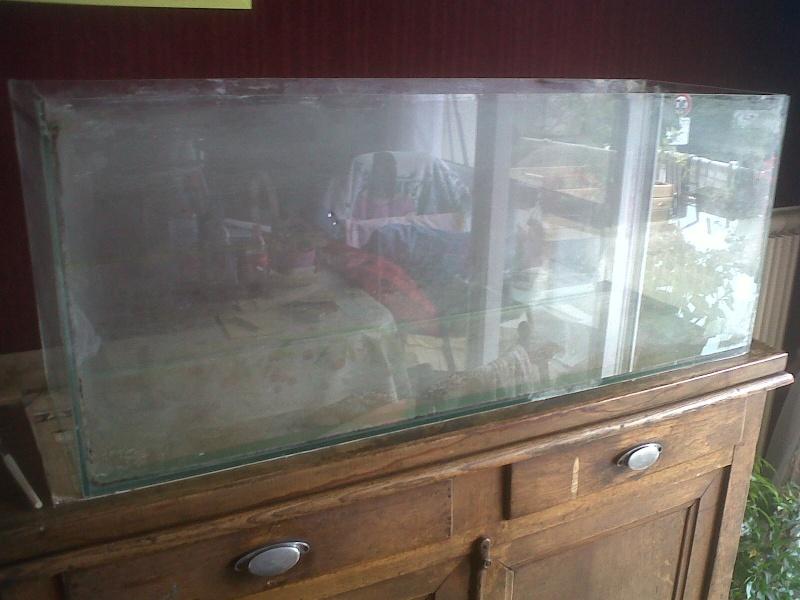 Projet aquaterrarium  Img-2011