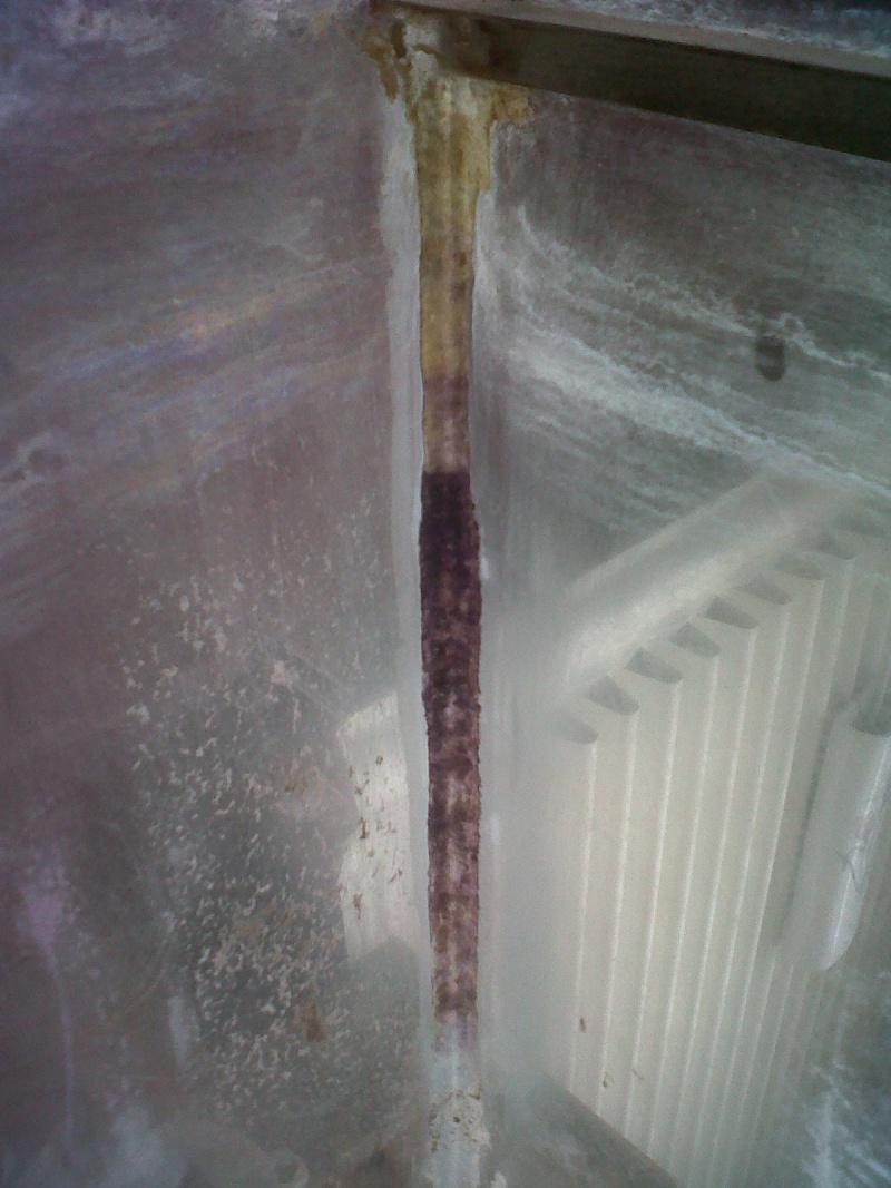 Projet aquaterrarium  Img-2012