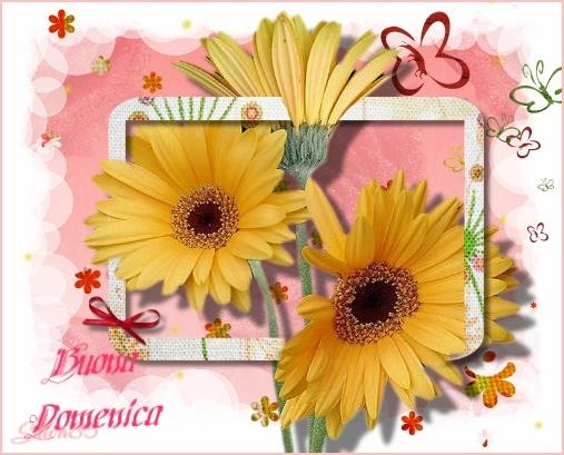 Domenica 25 Ottobre - SALUTI -CHIACCHIERE E NOTIZIE  !!!!!!!!!! Buona_13