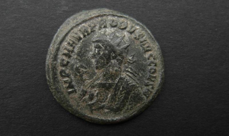 Aurelianus de Probus Sam_0119