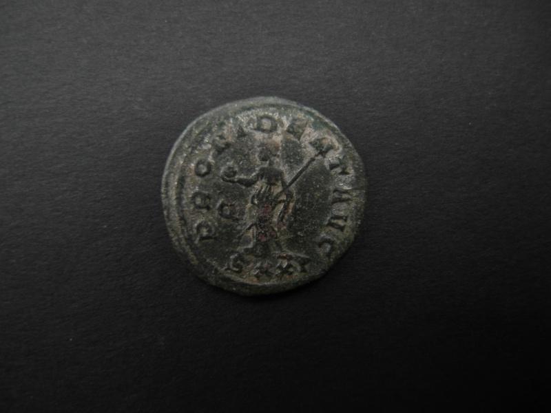 Aurelianus de Probus Sam_0120