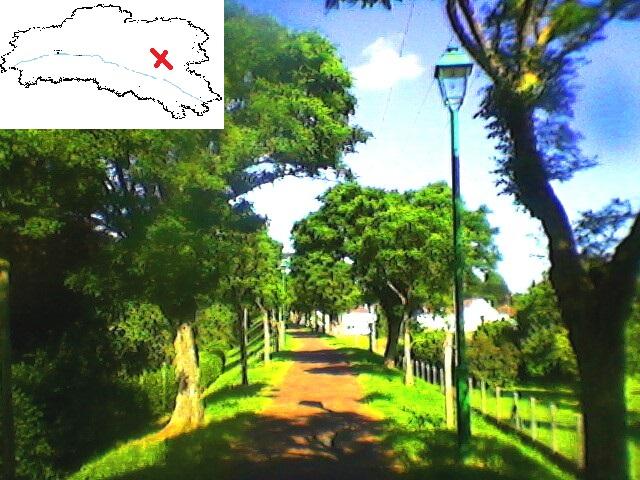 Promenade du Tacot Nogent-sur-Vernisson T111