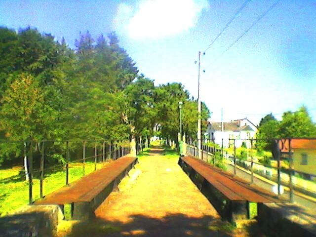 Promenade du Tacot Nogent-sur-Vernisson T211