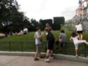 Les pelouses autour de Central Plaza - Page 4 P8160014