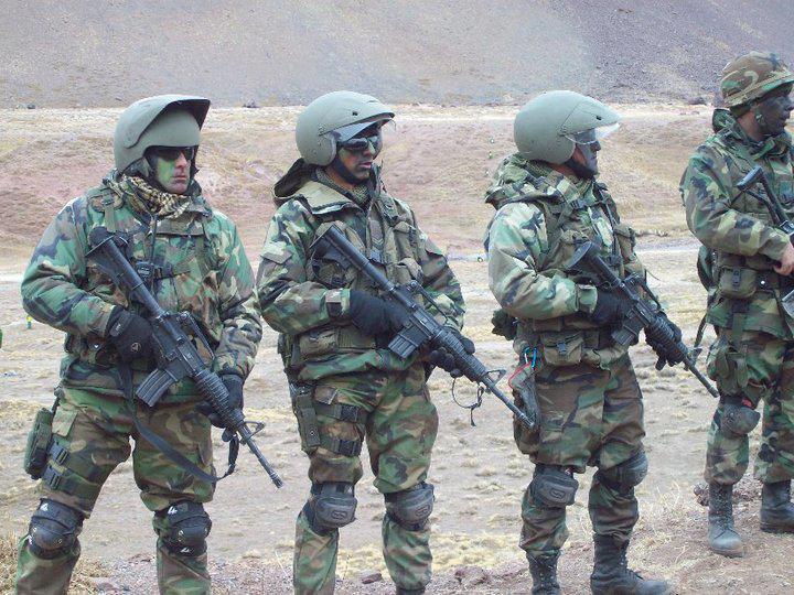 Armée argentine/Fuerzas Armadas de la Republica Argentina - Page 8 Argent11