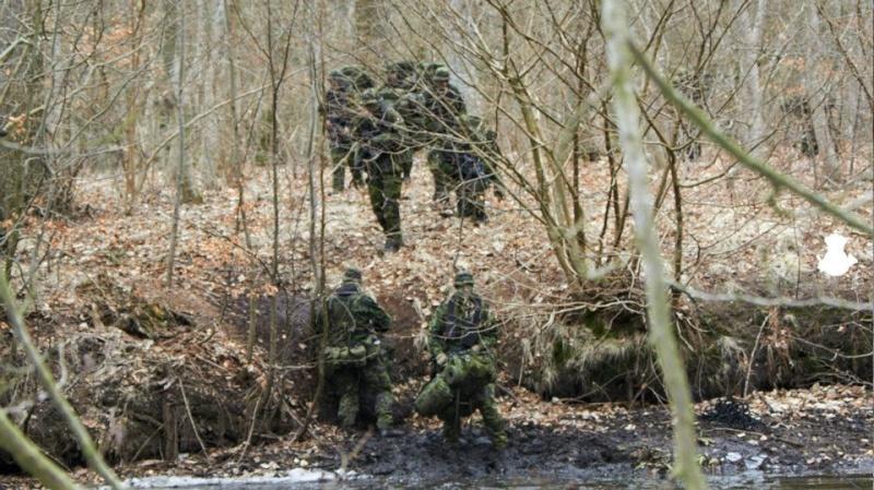 Armée danoise/Danish Defence(Forsvaret) - Page 6 Dan0410