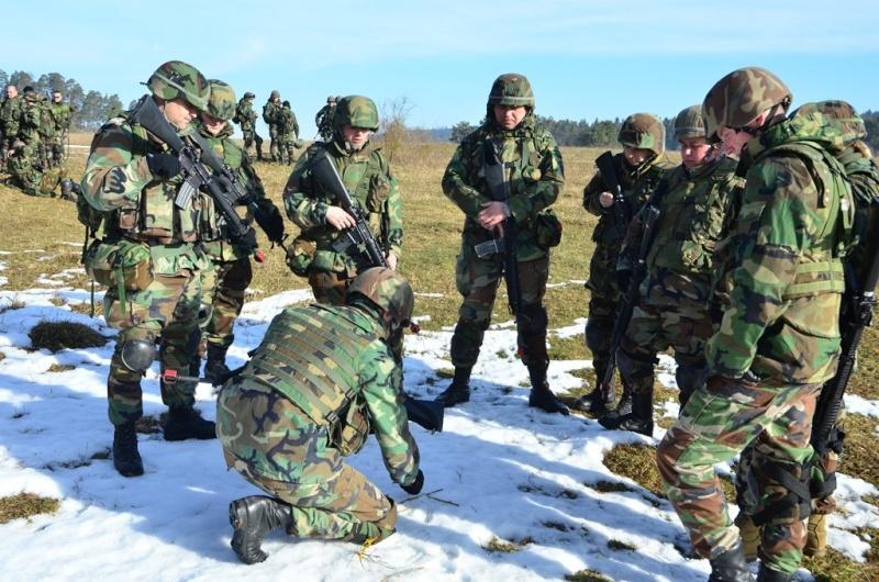 Forces armées moldaves Mol0610