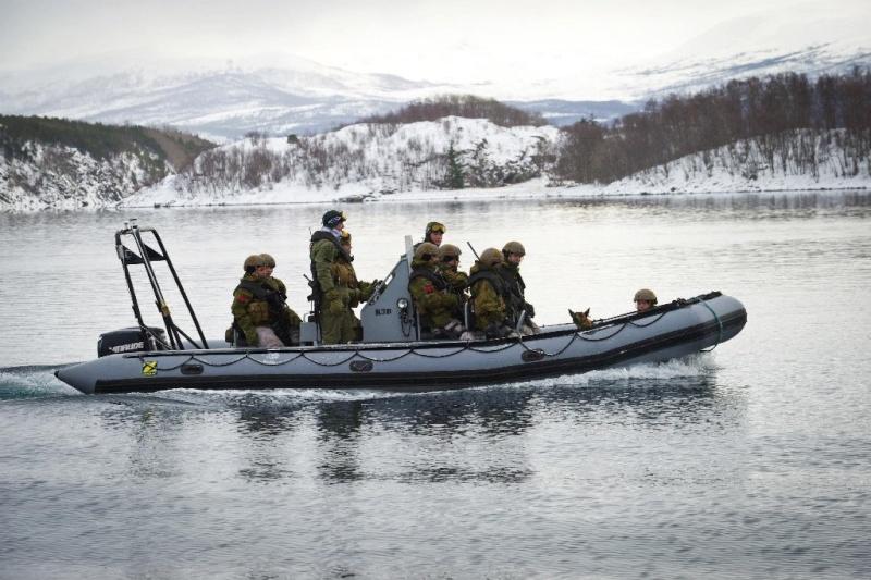 Armée norvegienne/Norwegian Armed Forces - Page 6 Norveg11