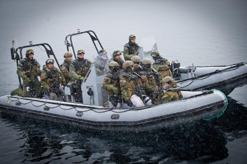 Armée norvegienne/Norwegian Armed Forces - Page 6 Norveg12