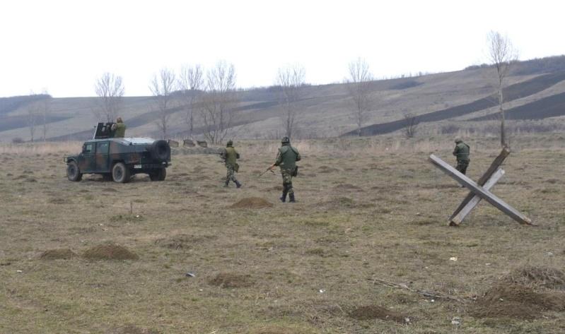 Armée Roumaine/Romanian Armed Forces/Forţele Armate Române - Page 6 Romani14