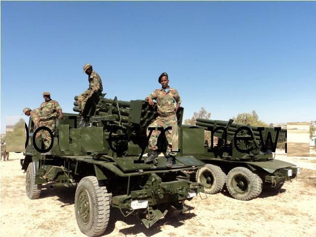 Armée Somalienne / Military of Somalia Som310
