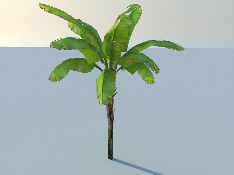 Nouveau logiciel de création de végétation Version de base gratuite ! Banani10