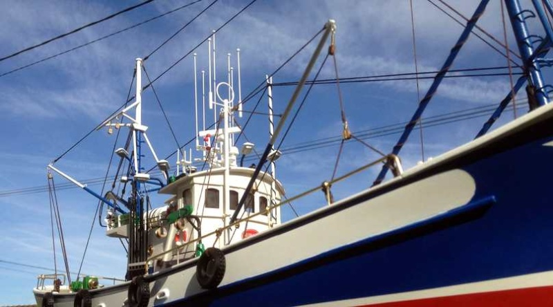 Thonier Carmen II rebaptisé Aurora (Artesania Latina 1/40°) de Guyon Stéphane Thoni157