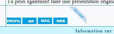 """Mettre """"en ligne"""" dans le cadre du mini profil du message En_lig10"""