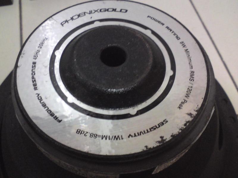 Phoenix Gold Speaker (sold) Dsc00927