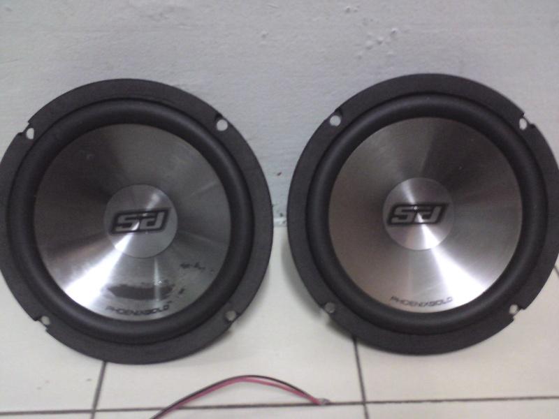 Phoenix Gold Speaker (sold) Dsc00928