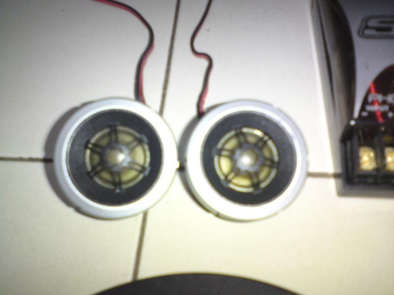 Phoenix Gold Speaker (sold) Dsc00929