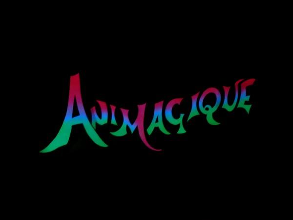 [TR] Séjours Magique à Disneyland paris || du 10 au 13 février || P1240010