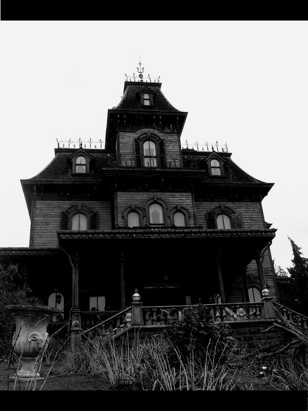 [TR] Séjours Magique à Disneyland paris || du 10 au 13 février || P1240112