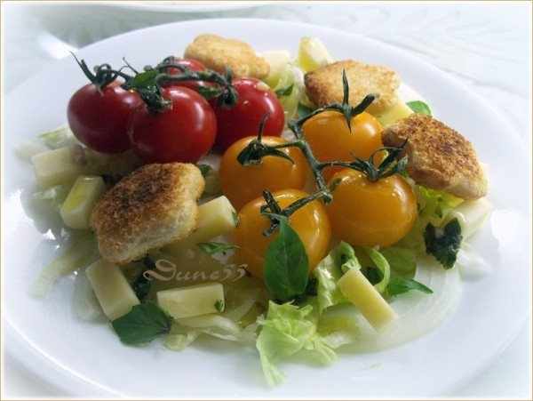 Panzanella (Salade de pain italienne)  12240210