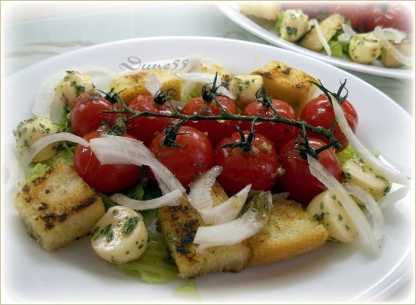 Panzanella (Salade de pain italienne)  B_111910