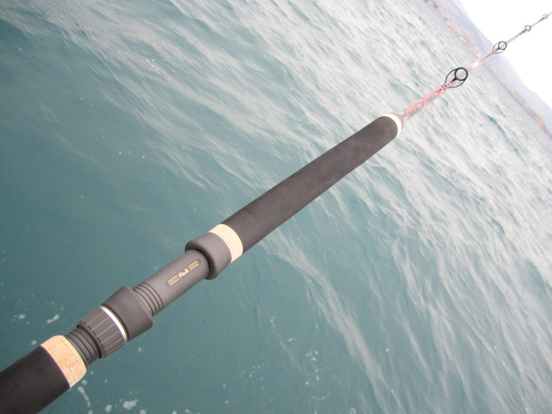 GFGX 7 - the seabass machine by 12 Manico11