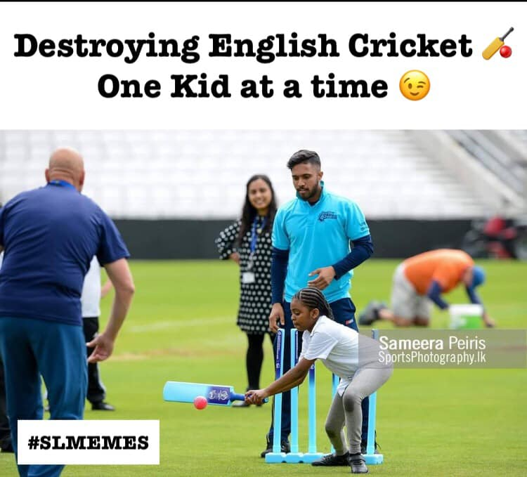 Cricket ! 65117210