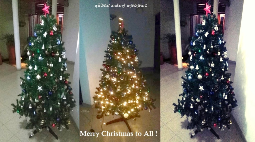 Wishing Everyone a Happy Christmas ! X110