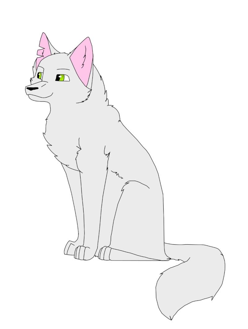 L'antre du Loup Tempat10